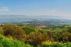 Фото: Зелень горных районов Израиля