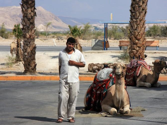 Фото: Еще одно развлечение в Эйлате: прогулка на верблюде - очень увлекательно