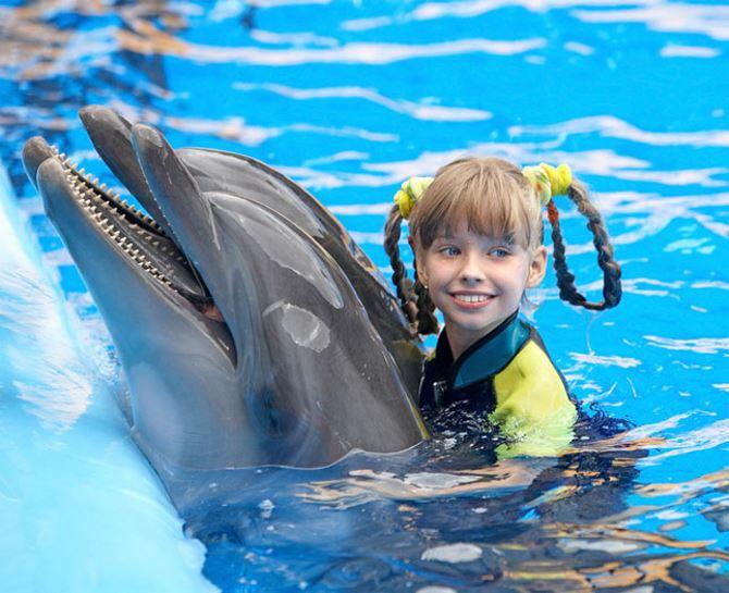 Фото: То место где можно поплавать с дельфинами